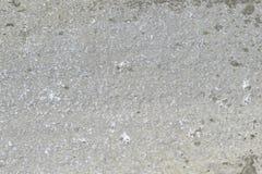 Grey Sandstone mit Flecken der Flechte Stockfotografie