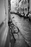 Grey Scale Photo of Bicycle Royalty Free Stock Photo