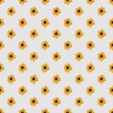 Grey Seamless Pattern leggero con i girasoli Fotografie Stock Libere da Diritti