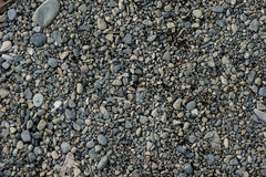Grey shingle. Texture. Stock Photos