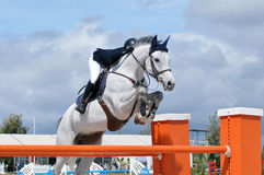 Grey show jumper Royalty Free Stock Images
