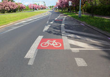 Grey sinuous bicycle path. In the street cities Royalty Free Stock Images