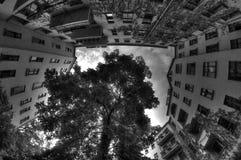 Grey Sky de Berlín, Alemania Imagen de archivo libre de regalías