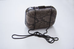 Grey snakeskin clutch Royalty Free Stock Image