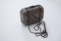 Grey snakeskin clutch Stock Photos