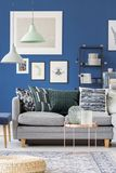 Grey sofa in blue room. Big grey sofa with decorative cushions in a blue room with gallery of pictures on the wall Royalty Free Stock Photos