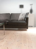 Grey Sofa with Pillow. A grey sofa with pillow, a coffee table on a pine wood floor Royalty Free Stock Photography