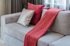 Grey sofa with red pillow in living room Stock Photography