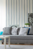 Grey sofa with small pillows Stock Photography