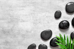 Grey spa background, palm leaves and black wet stones, top view. Grey spa background, moisturizing concept, palm leaves and black wet stones, top view Stock Image
