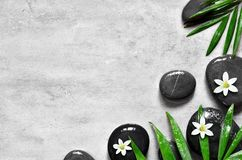 Grey spa background, palm leaves and black wet stones, top view Stock Photo