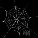 Grey Spider poligonal y su telaraña Foto de archivo libre de regalías