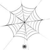 Grey Spider poligonal y su telaraña Imagen de archivo