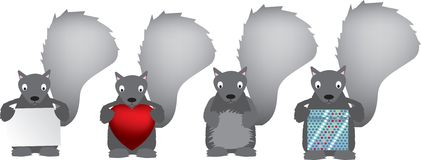 Grey squirrel set Royalty Free Stock Photography