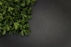 Grey stone background with parsley left corner Royalty Free Stock Photos