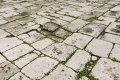Grey stone paving texture Royalty Free Stock Photos