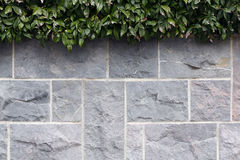 Grey stone wall Stock Photography