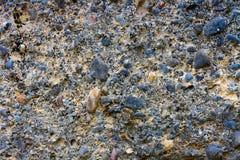 Grey stones Stock Images