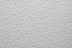 Grey styrofoam plate Royalty Free Stock Photography