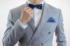Grey suit plaid texture, bowtie, pocket square Stock Photos