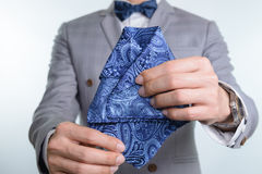 Grey suit plaid texture, bowtie, pocket square Stock Images