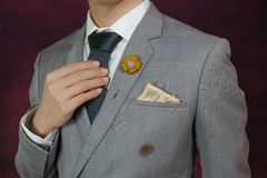 Grey suit plaid texture, necktie, brooch, handkerchief Royalty Free Stock Images
