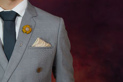 Grey suit plaid texture, necktie, brooch, handkerchief Royalty Free Stock Photography