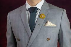Grey suit plaid texture, necktie, brooch, handkerchief Royalty Free Stock Images