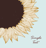 Grey sunflower text banner Royalty Free Stock Images