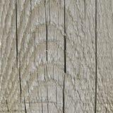 Grey Tan Taupe Sepia Wooden Board resistida natural, textura de madeira rachada grande Gray Lumber Background envelhecido idoso d fotos de stock royalty free