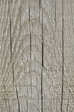 Grey Tan Taupe Sepia Wooden Board superficielle par les agents naturelle, texture en bois grand vieux Gray Lumber Background âgé  photographie stock libre de droits