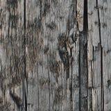 Grey Tan Taupe Wooden Board superficielle par les agents naturelle, texture en bois ruinée criquée de sépia d'ébauche, grand vieu image stock