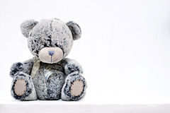 Grey teddy bear Stock Image