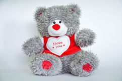 Grey Teddy Bear Royalty Free Stock Images