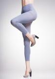 Grey tights on sexy woman legs  on grey Stock Photos