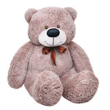 Grey toy plush teddy bear Royalty Free Stock Image