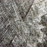 Grey Tree Stump Cut Texture resistido natural, grande Gray Lumber Background Macro Closeup envelhecido idoso detalhado, preto esc foto de stock royalty free