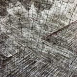 Grey Tree Stump Cut Texture resistido natural, viejo Gray Lumber Background Macro Closeup envejecido detallado grande, negro oscu Fotos de archivo libres de regalías