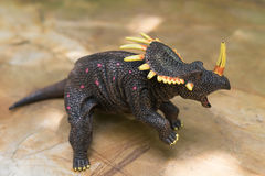 Grey triceratops toy standing. On rock Royalty Free Stock Photo