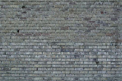 Grey wall from bricks Stock Image