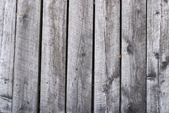 Grey weathered boards Stock Photography