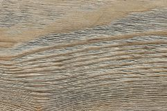 Weathered wood texture. Grey weathered wood texture close-up as background Royalty Free Stock Photography