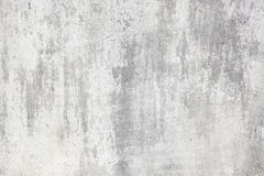 Grey and white cement background Stock Images