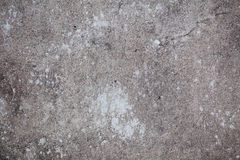 Grey and white cement background. Textured, dark Stock Photos