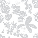 Grey-white seamless pattern tropical flowers.vector illustration Royalty Free Stock Images
