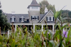 Grey and white southern house. Gray and white large wooden southern mansion in Charleston, South Carolina. Green plants and purple flowers in foreground Royalty Free Stock Photo