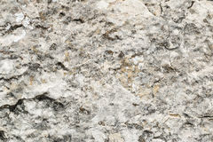 Grey and white texture stone. Background Stock Images