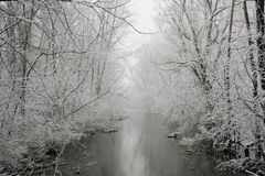 Grey Winter. A forested river during a snow storm stock photo