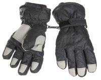 Grey winter gloves Stock Image