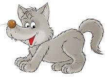 Grey wolf stock illustration